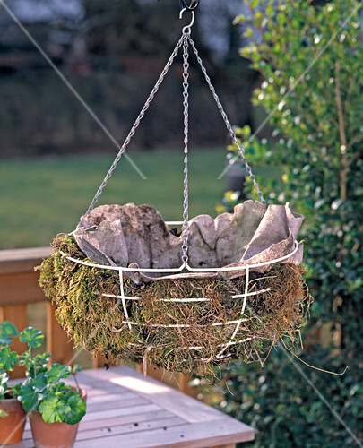hanging basket drahtkorb mit moos und vlies ausge bild kaufen friedrich strauss. Black Bedroom Furniture Sets. Home Design Ideas