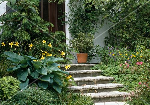 treppe zum hauseingang bild kaufen friedrich strauss gartenbildagentur. Black Bedroom Furniture Sets. Home Design Ideas