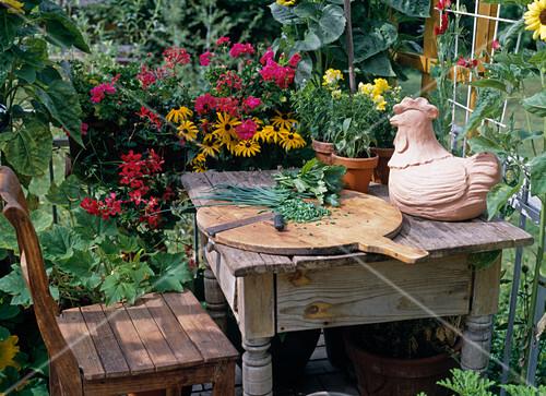 kr uter schneiden auf einem b uerlichen balkon bild kaufen 12110944 stockfood. Black Bedroom Furniture Sets. Home Design Ideas