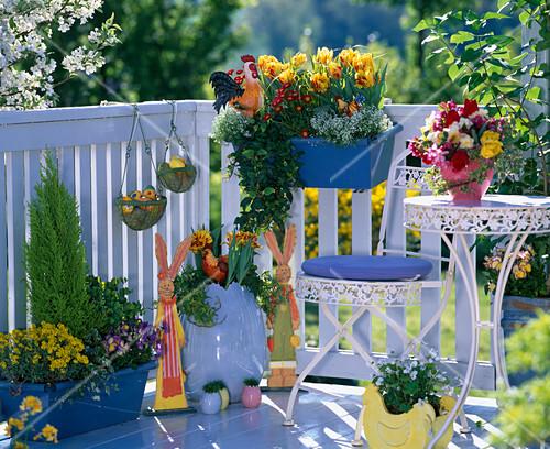 tulipa tulpen bellis tausendsch n bild kaufen. Black Bedroom Furniture Sets. Home Design Ideas