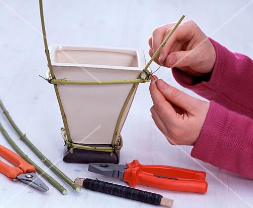 cornus ger st um viereckvase als steckhilfe 1 3 bild kaufen friedrich strauss gartenbildagentur. Black Bedroom Furniture Sets. Home Design Ideas
