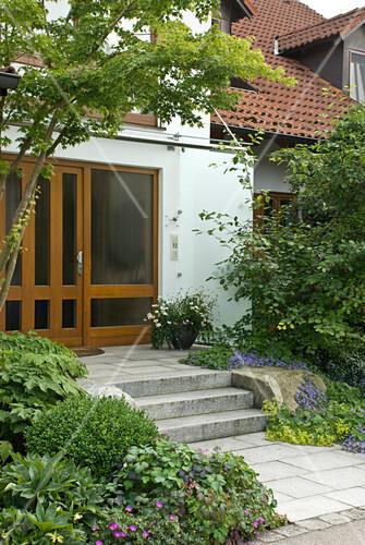 hauseingang mit treppe acer palmatum japanischer. Black Bedroom Furniture Sets. Home Design Ideas