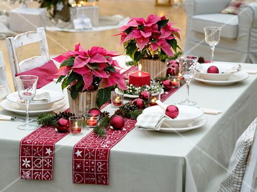 weihnachtliche tischdeko mit euphorbia pulcherrima weihnachtssternen bild kaufen friedrich. Black Bedroom Furniture Sets. Home Design Ideas