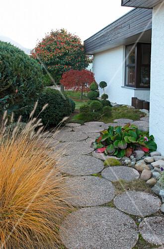 weg mit runden betonplatten im vorgarten bild kaufen. Black Bedroom Furniture Sets. Home Design Ideas