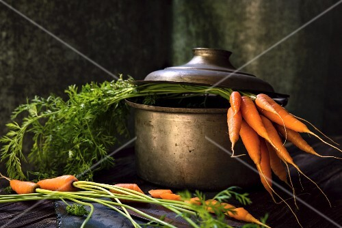 Fresh carrots in a cooking pot
