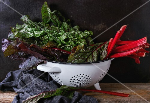 Fresh chard mangold salad leaves in white colander