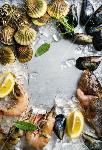 Fresh seafood with herbs and lemon on ice, prawns, fish, mussels and scallops