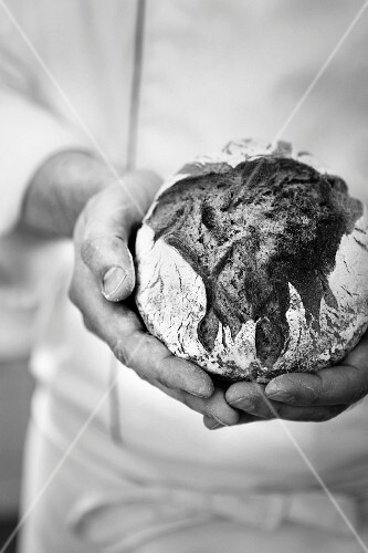 A baker holding a small loaf of bread in his hands