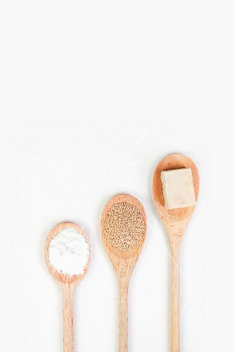 Yeast, fresh and dried, on cooking spoons