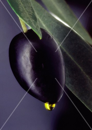 A Black Olive on a Toothpick; Olive Oil