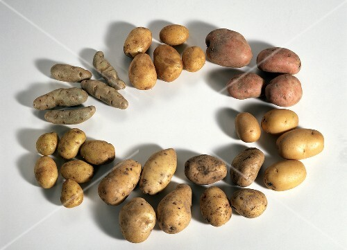 Several Potatoes in a Circle