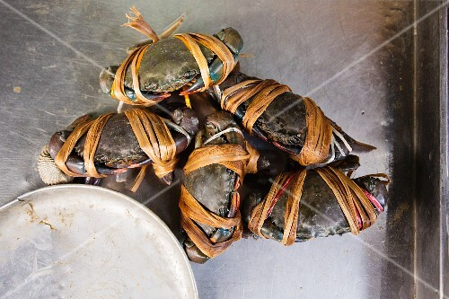 Tied crabs at a fish market, Thailand