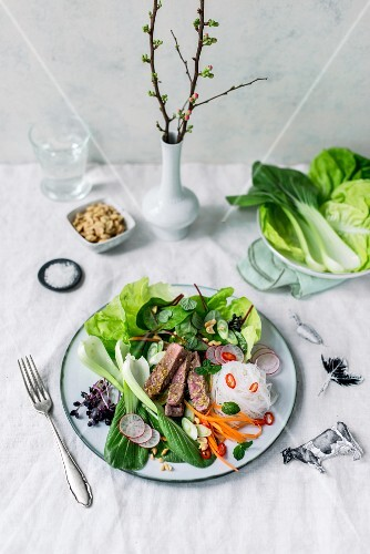 Sliced beef steak with Asian vegetables, glass noodles, peanuts and a ginger and lime dressing