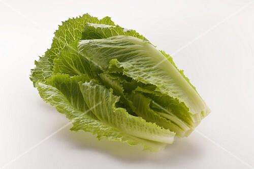 romanasalat r mischer salat bild kaufen 12320708 stockfood. Black Bedroom Furniture Sets. Home Design Ideas