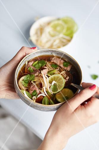 pho suppe mit rindfleisch und reisnudeln vietnam bild kaufen 12410244 stockfood. Black Bedroom Furniture Sets. Home Design Ideas