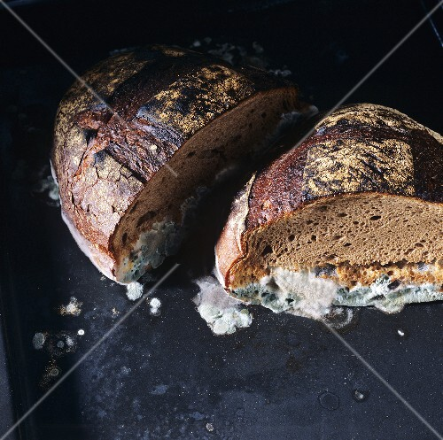 Two mouldy halves of loaf of bread (1)