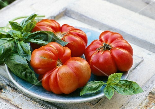 Beefsteak tomatoes and basil on a plate