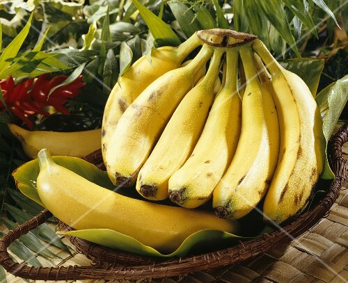 Bananas from S. America