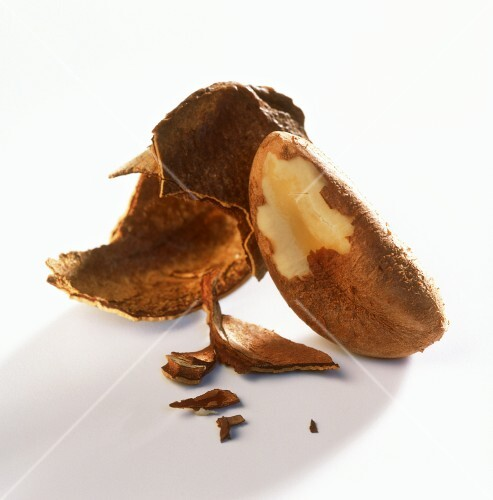 Shelled Brazil nut and shell