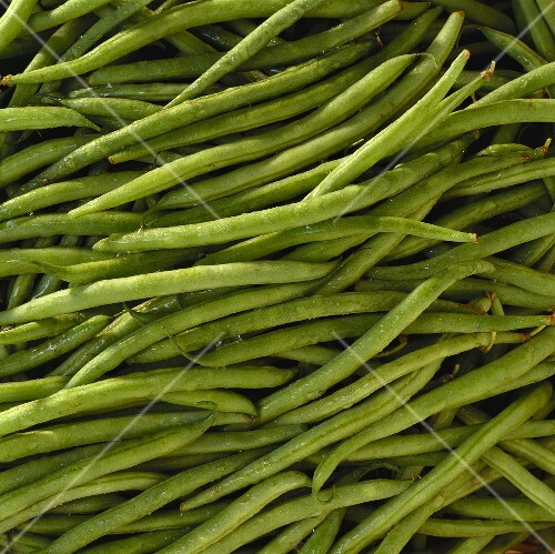 Haricots verts (type of green bean, filling the picture)