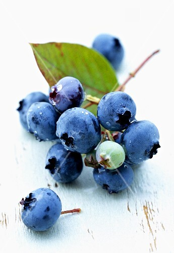 Fresh blueberries with leaf