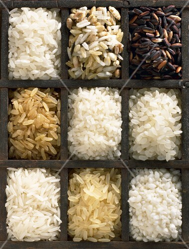 Various sorts of rice in type case (overhead view)