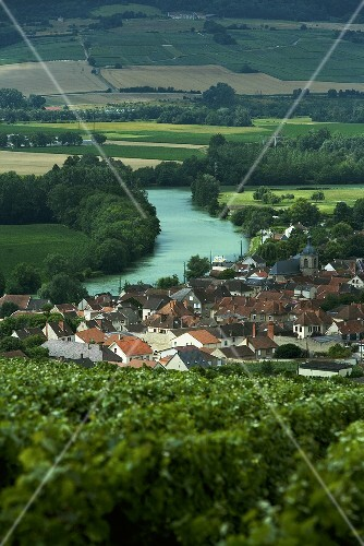 The river Marne flowing through Champagne in France