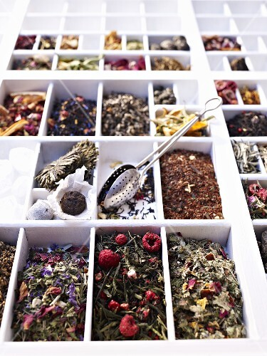A seedling tray filled with various types of tea