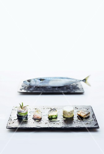 A variation on Sylt mackerel