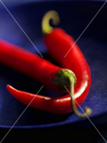Chillies, variety 'Long red'