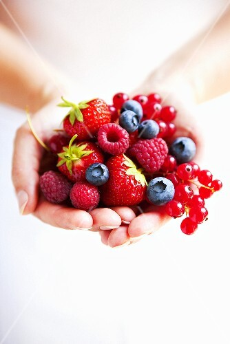 Hands holding mixed berries