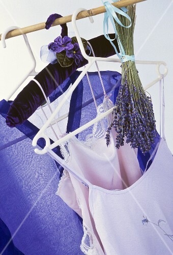 Bunch of lavender hanging in wardrobe