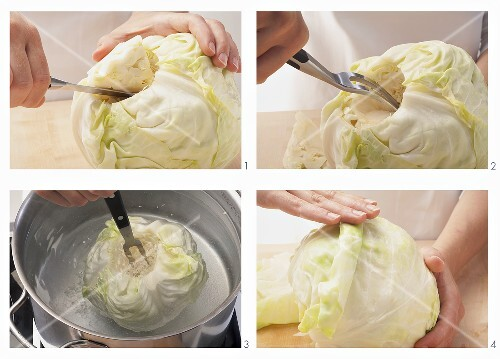 White cabbage being prepared for cabbage roulade