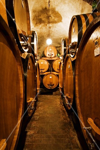 Wine cellar, Montepulciano, Tuscany, Italy