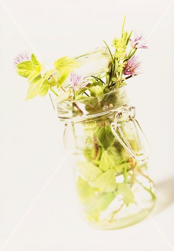 Fresh herbs in a preserving jar