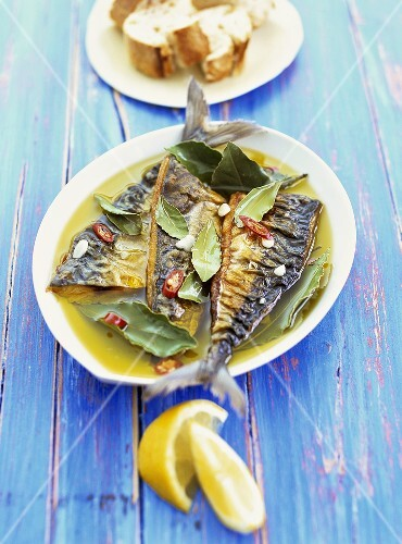 Mackerel in olive oil marinade with bay leaves and chilli