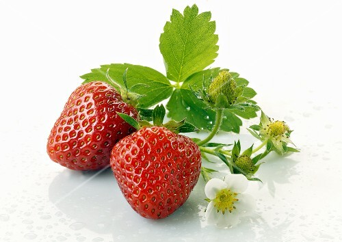 Strawberries with flowers and leaves