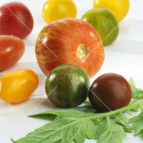 Various types of tomatoes with drops of water