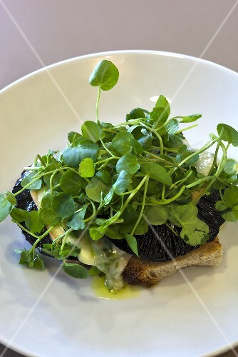 Toast with mushrooms, cheese and cress
