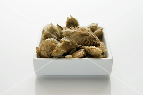 Dried hops needles (lupuli flos)
