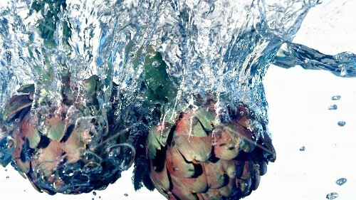 Artichokes falling into water