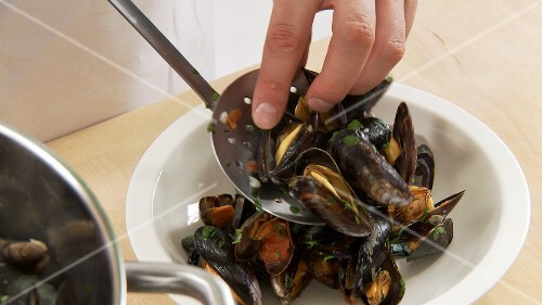Cooked mussels being arranged on a deep plate