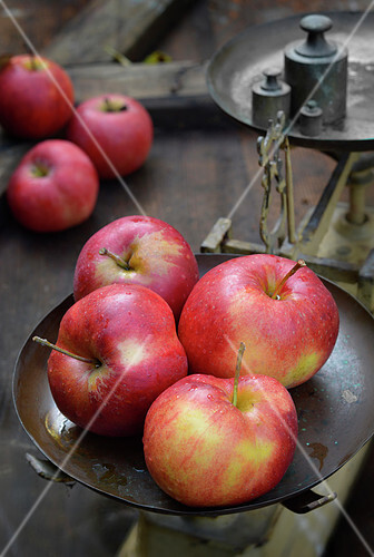 Jonagold apples on old-fashioned scales