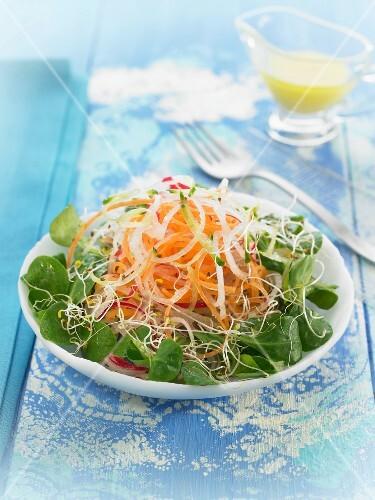 salat mit kresse karotten zwiebeln und sojasprossen bild kaufen 60186306 stockfood. Black Bedroom Furniture Sets. Home Design Ideas