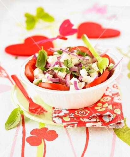 tomatensalat mit feta und roten zwiebeln bild kaufen 60193812 stockfood. Black Bedroom Furniture Sets. Home Design Ideas
