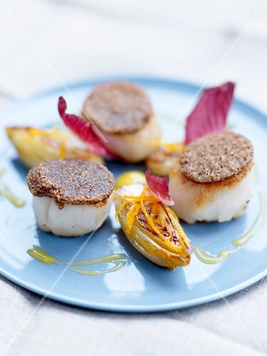 Scallops in coffee crust with braised chicory with orange