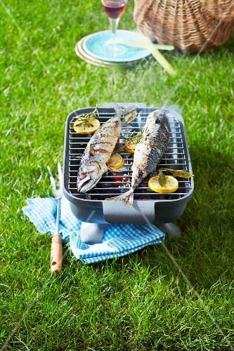 Grilling sea bass on the barbecue outdoors