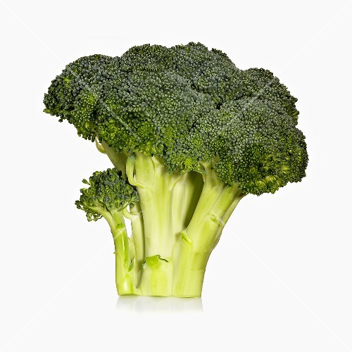 Raw Broccoli Bunch on White Background