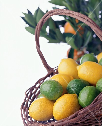 Basket of Lemons and Limes on White Background