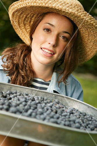 Woman Holding Tray of Fresh Blueberries